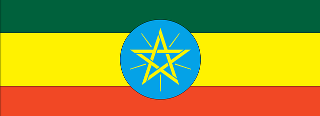 Ethiopia Flag Coffee Profile