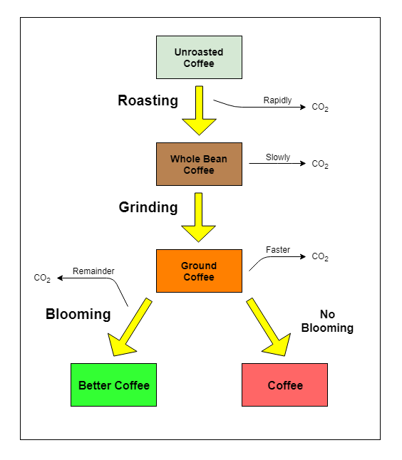 Blooming Steps Flowchart