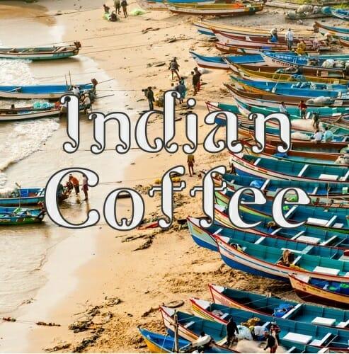 Volcanica Indian Monsooned Malabar Coffee