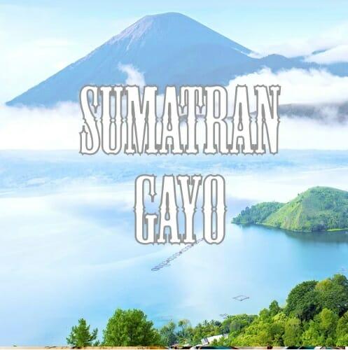 Volcanica Indonesian Sumatra Gayo Coffee
