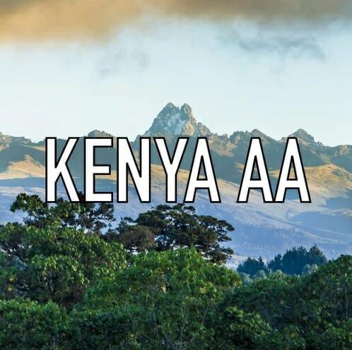 Volcanica Kenya AA Coffee