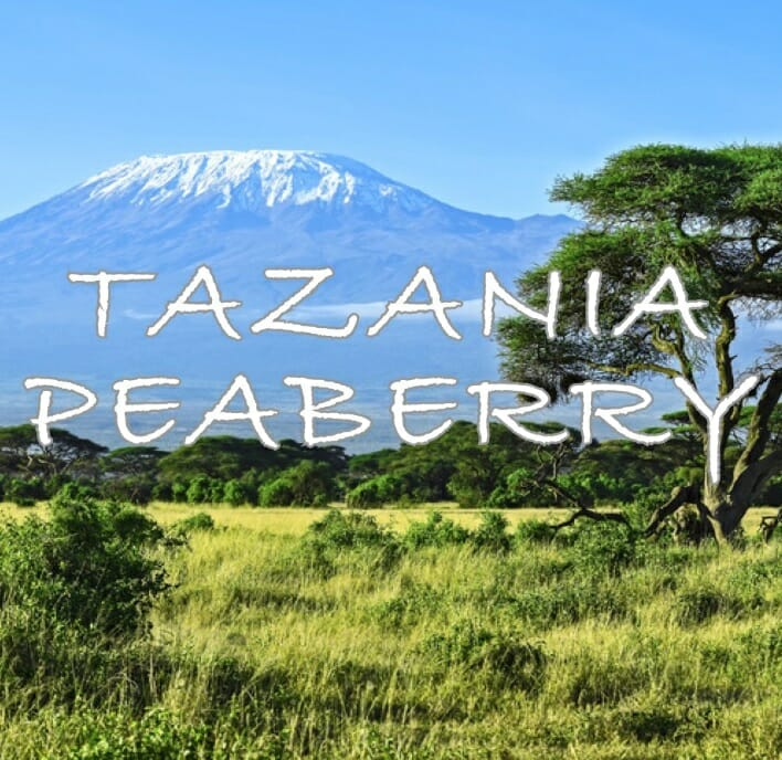 Volcanica Tanzanian Peaberry Coffee